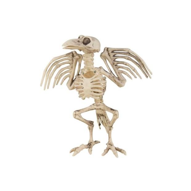 squelette-de-corbeau-